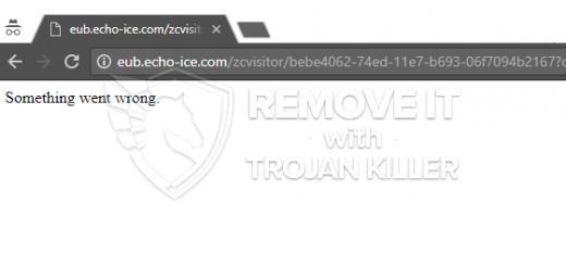 eub.echo-ice.com